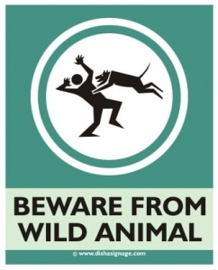 Beware from wild Animal